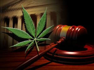 marijuana-court-300x225